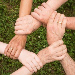 Secteur Adultes/Familles/Seniors